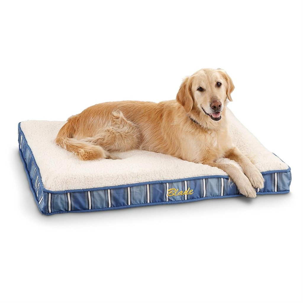 Cozy Memory Foam Bed